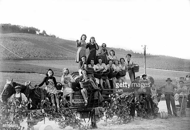 Harvest in Champagne October 1941 LAP4967