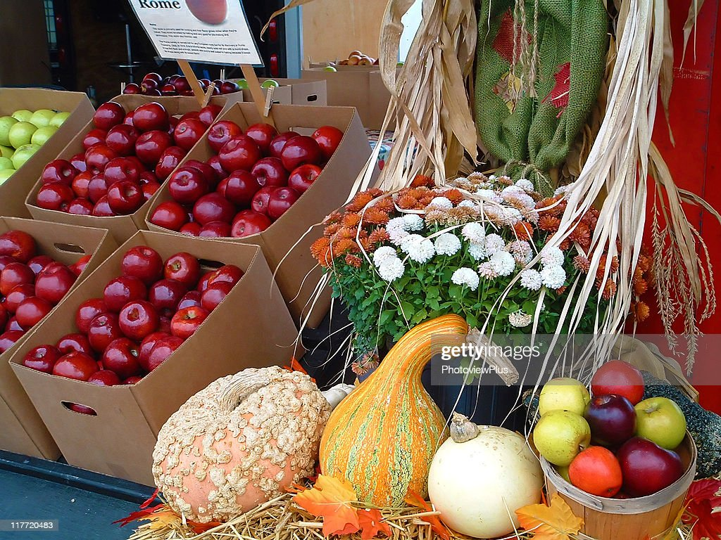 Harvest on Blue Ridge : Stock Photo