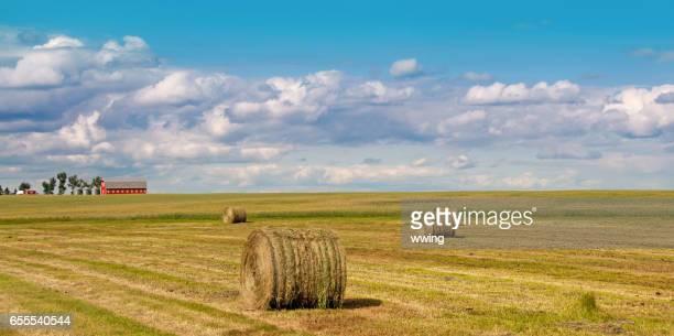 Geerntete Heu-Feld mit großen Ballen und Bauernhof am Horizont