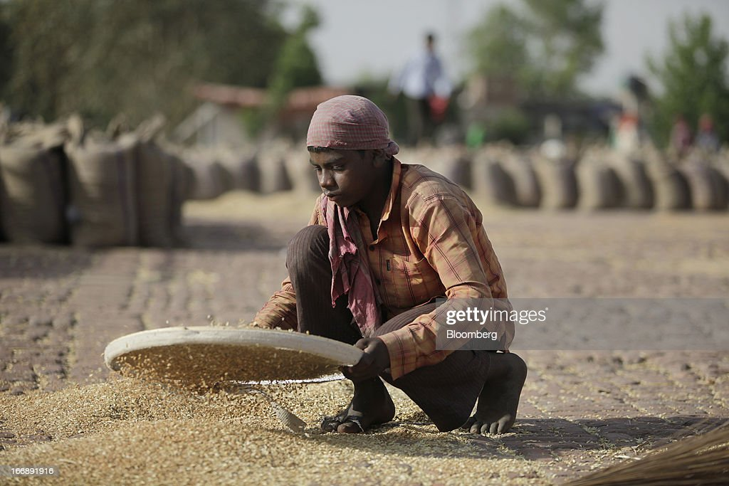 Harvested wheat is cleaned at a grain market in the district of Jalandhar in Punjab, India, on Tuesday, April 16, 2013. Wheat harvest in India, the second-biggest grower, may reach a record for a sixth straight year after farmers increased use of high-yielding seeds and winter rains boosted crop prospects, a state-run researcher said. Photographer: Prashanth Vishwanathan/Bloomberg via Getty Images