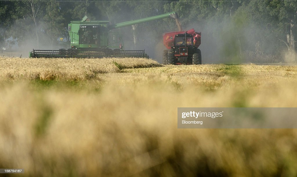 Harvested wheat is transferred from a John Deere combine, left, to a bin pulled by a New Holland tractor near Salto, Argentina, on Monday, Dec. 24, 2012. Argentina, South America's largest wheat producer, will have a current crop as low as 9 million tons because of excess rain, heat and plant diseases, a board director of wheat producers association Aaprotrigo said. Photographer: Diego Giudice/Bloomberg via Getty Images