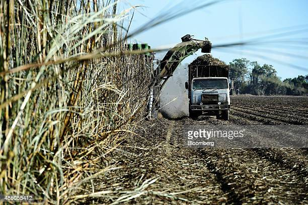 A harvester loads a truck with sugarcane at a plantation near Ayr Queensland Australia on Sunday Aug 9 2015 Global sugar prices reached a sixyear low...