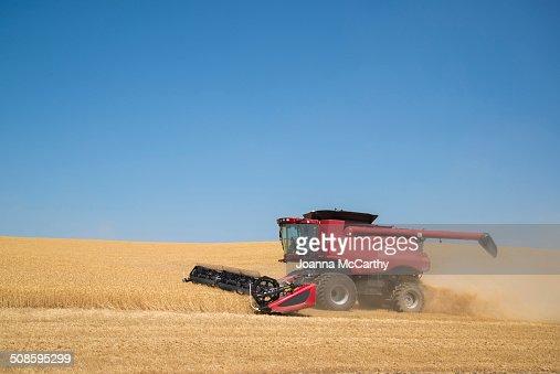 Harvester : Foto de stock