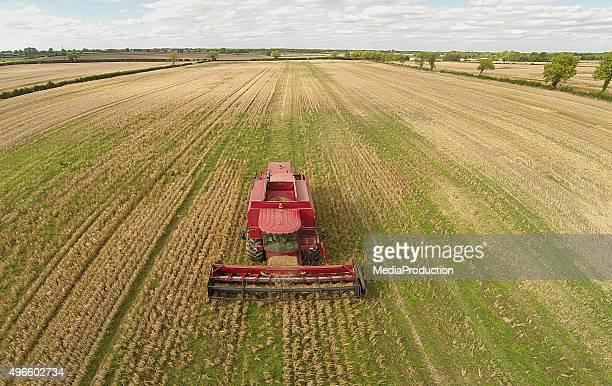 Harvesting a bad crop