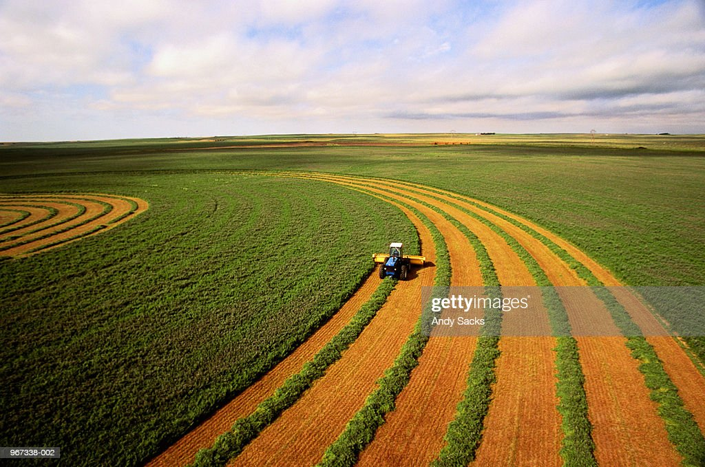 Harvesting alfalfa crop, aerial view