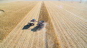 Aerial picture of a combine harvesting corn in North Dakota