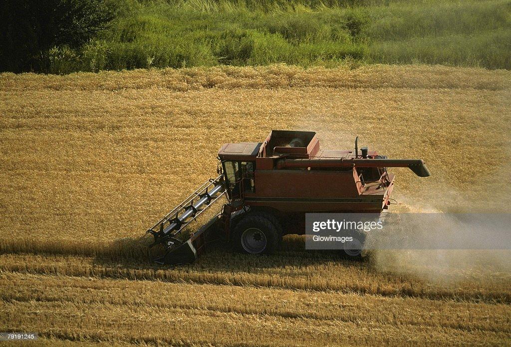 Harvesting golden wheat, Washington state : Foto de stock