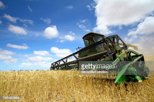 Harvesting Machine in field : Foto de stock