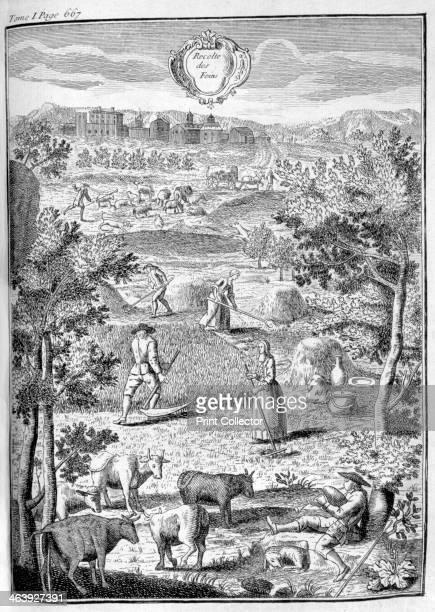 Harvesting the hay 1775 A print from La nouvelle maison rustique ou économie générale de tous les biens de campagne la manière de les entretenir et...