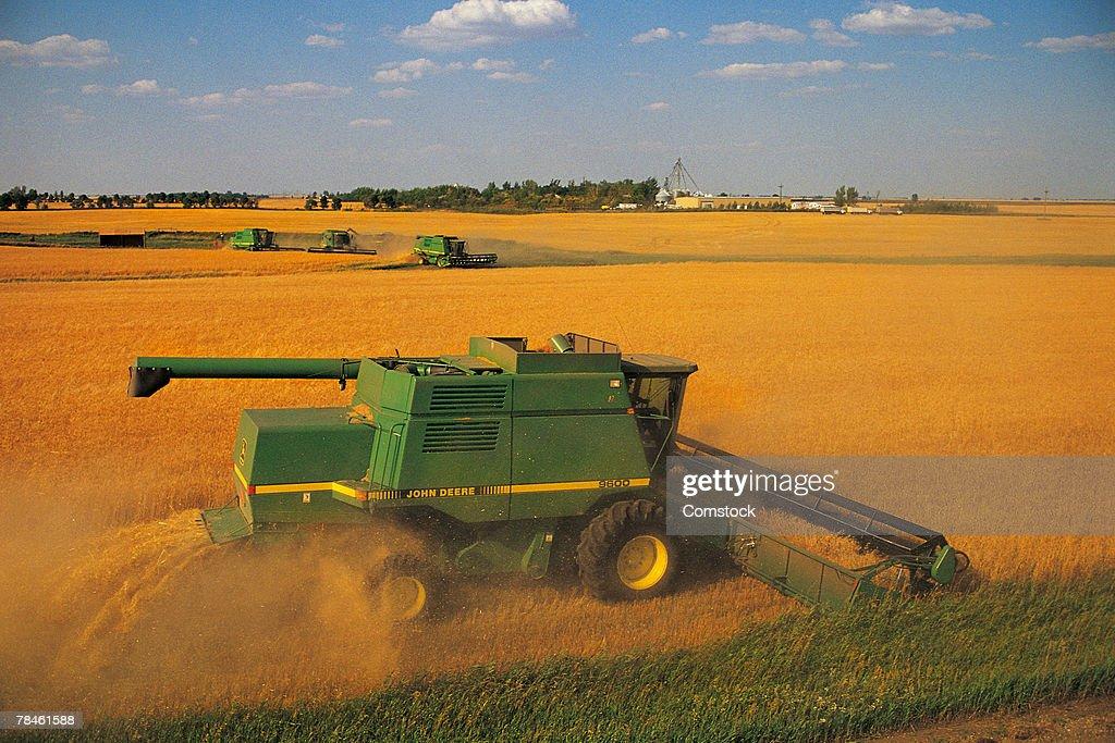 Harvesting wheat on vast farm