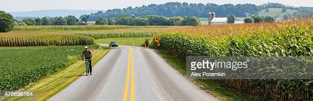 収穫の時間です。 アーミッシュ男性、ペンシルバニアダッチカントリーなど、ランカスター郡
