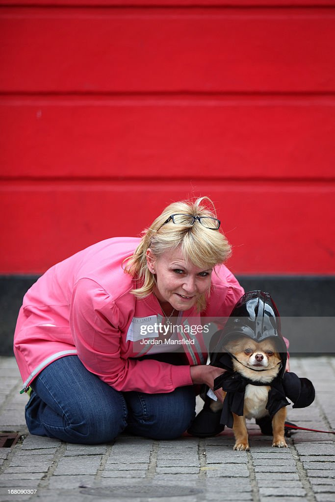 Harvey, a long-haired Chihuahua is dressed up as the character Darth Vader from the film Star Wars with owner Jayne Barley on May 5, 2013 in London, England. Enthusiasts gathered at the Picture House in Stratford to parade their dogs dressed up as famous Sci-Fi characters as part a London-wide event called Sci-Fi London.