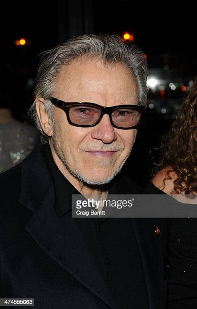 Harvey Keitel attends the 2014 Turtle Ball at The Bowery Hotel on February 23 2014 in New York City