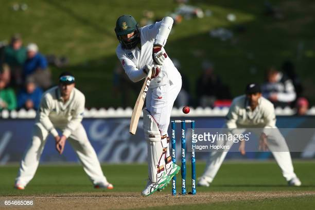 Hashim Amla of South Africa bats during day three of the test match between New Zealand and South Africa at Basin Reserve on March 18 2017 in...