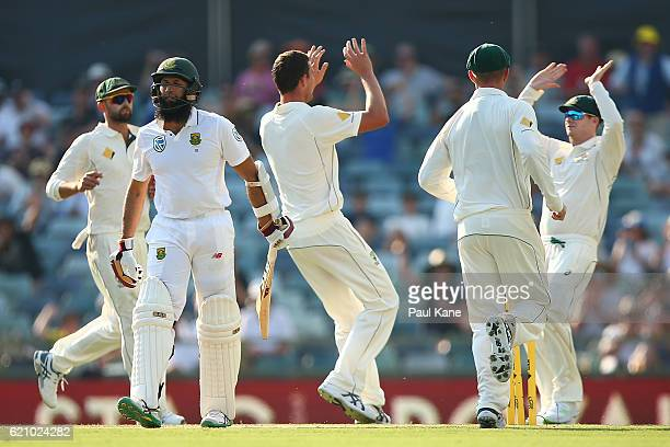 Hashim Amla of South Africa walks back to the rooms after being dismissed by Josh Hazlewood of Australia during day two of the First Test match...