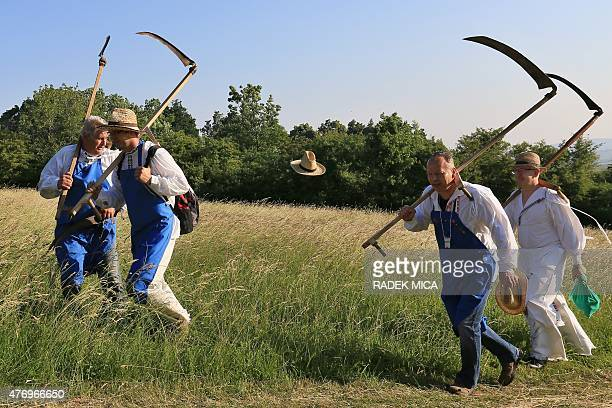 A hat is lifted by the wind off a man wearing tarditional clothes and carrying scythes and sickles while marching to a meadow to mow in a traditional...