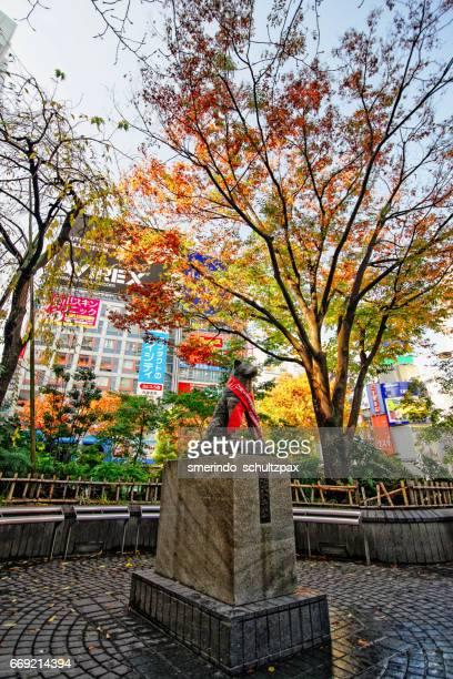Hatchiko Statue near Shibuya Crossing