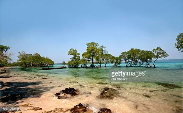 Havelock island - Andaman