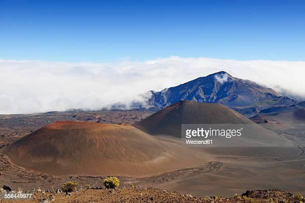 USA, Hawaii, Maui, Haleakala, volcanic landscape with cinder cones