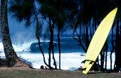 USA Hawaii O'ahu, North Shore, 'Ehukai Beach Park, surfing.
