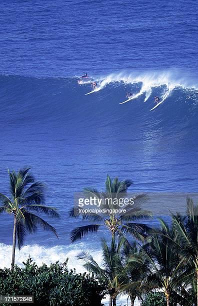 USA Hawaii O'ahu, North Shore, Waimea Bay, surfers.