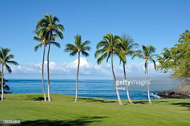 Parcours de Golf de Hawaï au bord de l'océan
