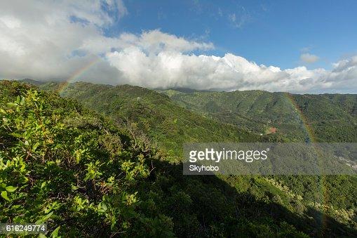 Havai Arco-íris : Foto de stock