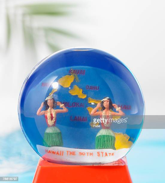 Hawaii Snowglobe