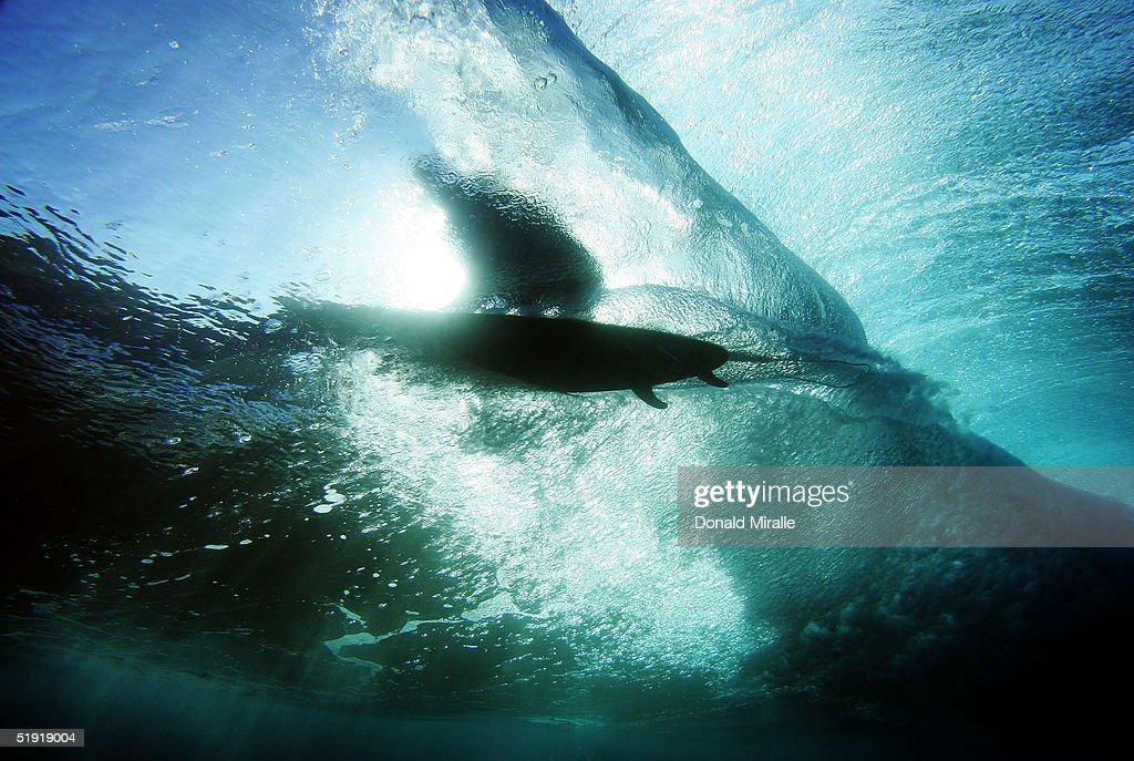 Hawaii Surf : Stock Photo
