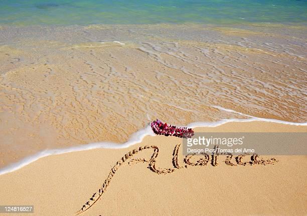Hawaii, Turquoise ocean waters, foaming shore water, orchid lei, Aloha written in sand
