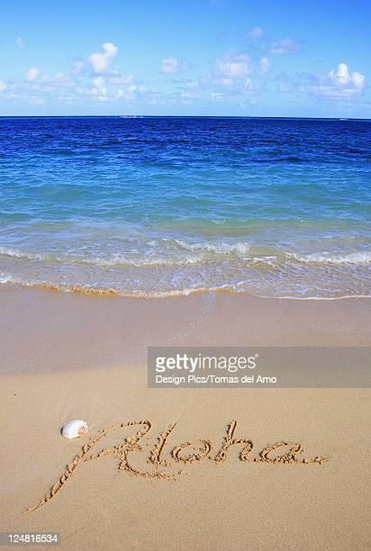 Hawaii, Turquoise ocean waters, foaming shore water, seashell, Aloha written in sand