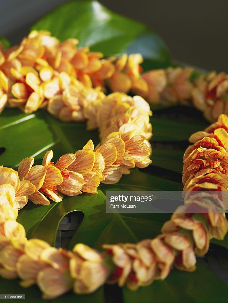 Hawaiian Lantern Ilima flower lei : Stock Photo