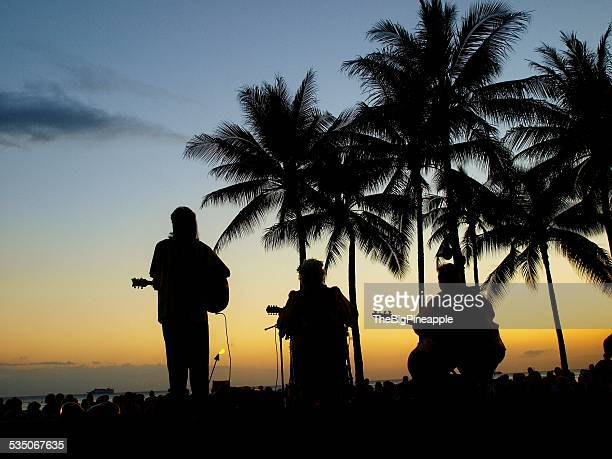 Hawaiian music band under palm trees sunset