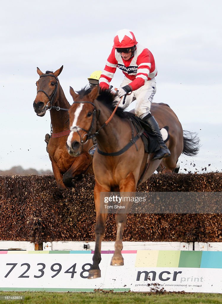 Hawkes Point ridden by Daryl Jacob jumps the final fence during the Jills Big Birthday Beginners Steeple Chase at Plumpton Racecourse on December 3, 2012 in Plumpton, England.