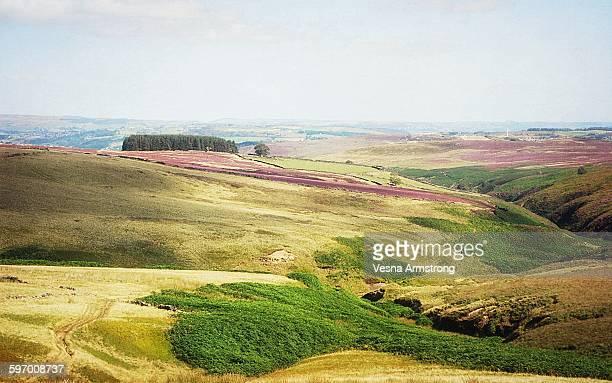 Haworth Moor, West Yorkshire, England