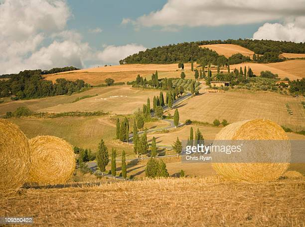Hay bale and rolling landscape, Tuscany, Italy