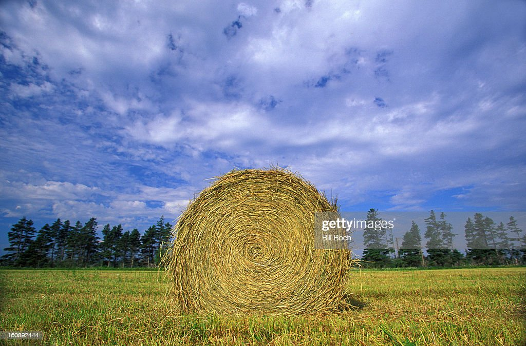 Hay bale in a Vermont field : Stock Photo