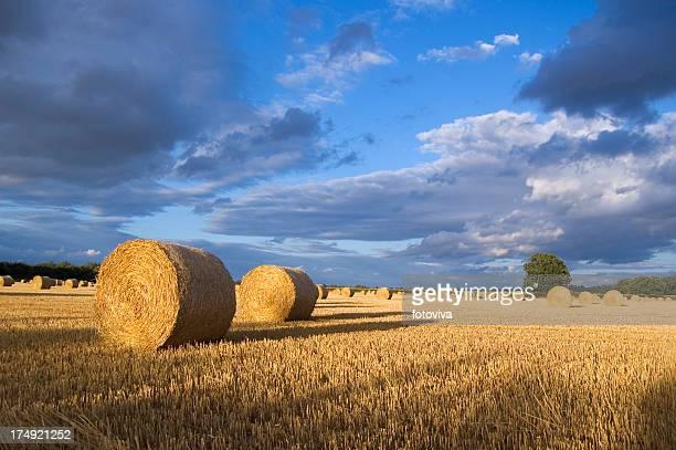 Heno Bale paisaje