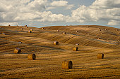 Hay bales and rolling landscape, Tuscany, Italy