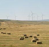 Hay Bales and Windmills, Nevada Ranch