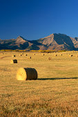 Hay bales in field by mountains