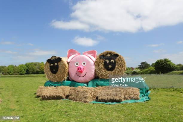 Hay bales in field made to look like sheep and pig
