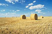 Hay bales in harvested wheat field, La Mancha, Spain