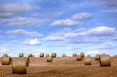 Hay Bales in Hertfordshire