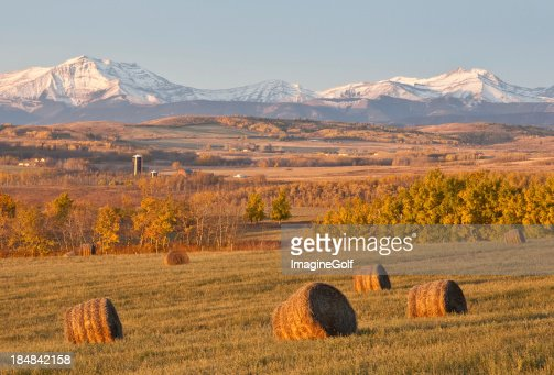 Hay Bales on the Prairie