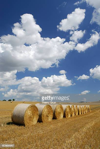 Hay bales with whites clouds