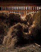 Hay in a barn.