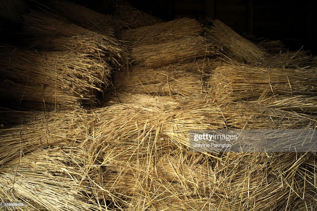 Hay in Old English Barn