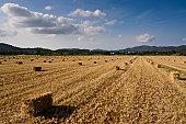 Hay stacks on field
