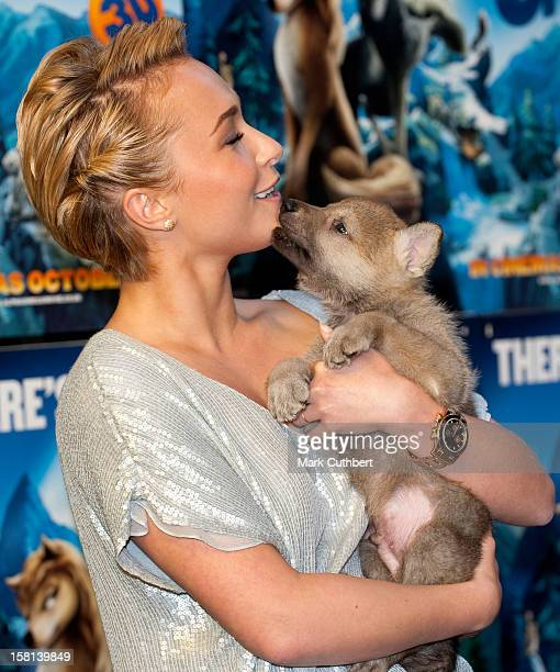 Hayden Panettiere Arrives For The Screening Of The New Animated Film Alpha And Omega At The Bfi Southbank In London